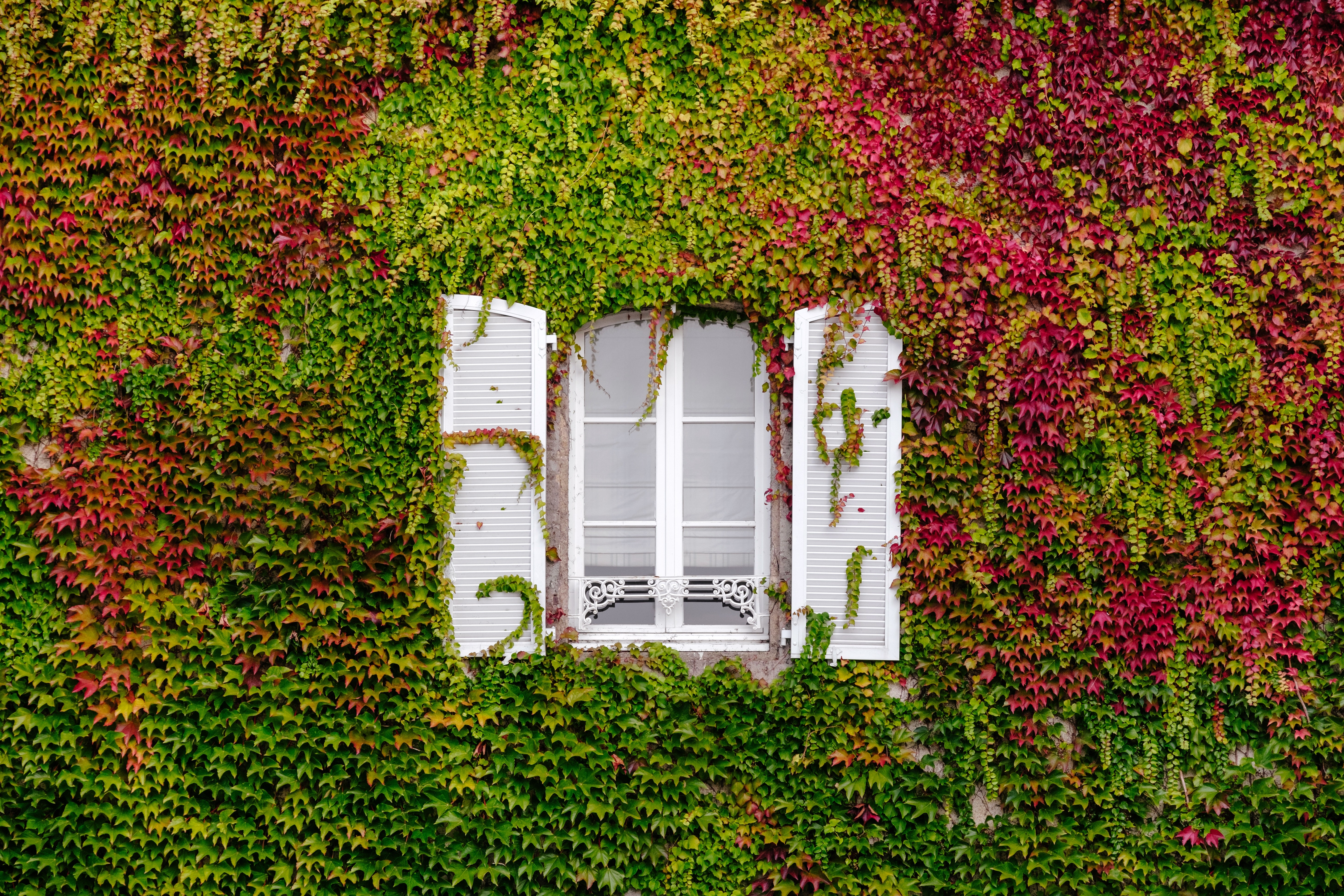 A window into Europe / Samuel Zeller (Unsplash)